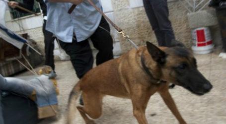 ZIONIST ISRAELI SETTLERS UNLEASH DOG PACK ON PALESTINIAN KIDS