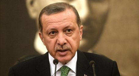 NO FLY AND SAFE ZONE, TURKEY'S PRIORITIES IN SYRIA: ERDOGAN