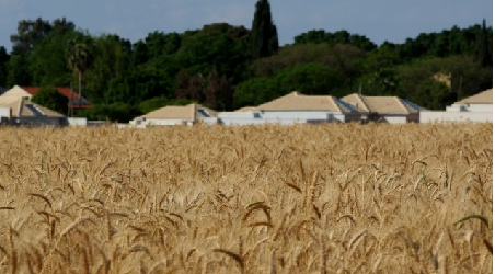 ISRAELI FARMERS THREATEN IDF BOYCOTT