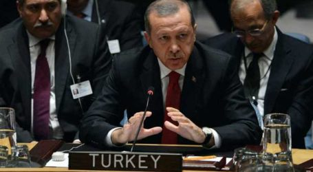 ERDOGAN HINTS AT COOPERATION ON ISIL