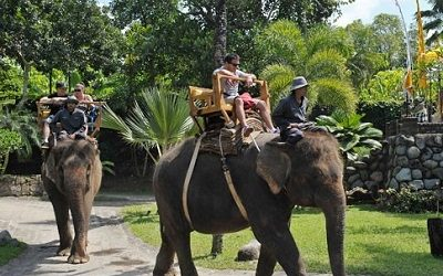 CHINESE TOURIST ARRIVALS TO BALI RISE 45.76 PERCENT