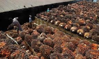 RI SEES $2.7 BILLION INVESTMENT IN DOWNSTREAM PALM OIL INDUSTRY