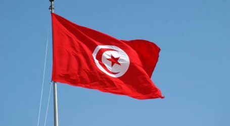 252 VIOLATIONS AGAINST JOURNALISTS IN TUNISIA 2013