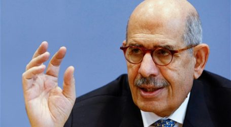 EL-BARADEI: I SEE EGYPT SINKING