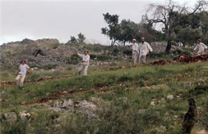PALESTINIAN FARMER GET AWAY FROM ISRAELI SETTLERS HIT-AND-RUN ATTEMPT