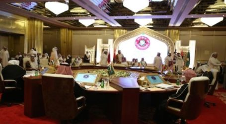 QATAR VOICES SUPPORT FOR EGYPT GOVERNMENT