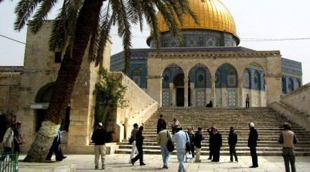 21 EXTREMIST SETTLERS STORM AL-AQSA