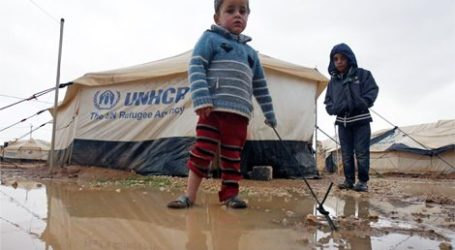AMNESTY CALLS ON FRANCE TO ABSORB MORE SYRIAN REFUGEES