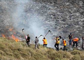 SETTLERS SET FIRE TO AGRICULTURAL LANDS IN NABLUS