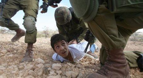 ISRAELI TROOPS DETAIN 11 PALESTINIANS ACROSS WEST BANK