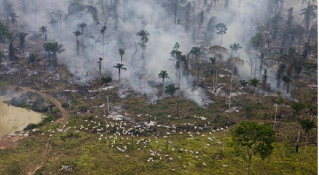 INDONESIA TO UTILIZE FOREIGN ASSISTANCE TO EXTINGUISH FOREST FIRES