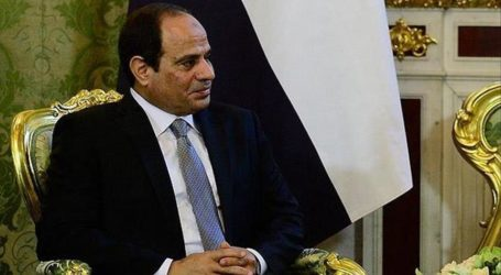 ACTIVIST URGES EGYPT'S SISI TO RECONCILE WITH BROTHERHOOD