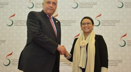 Indonesia-Egypt Agree to Bring Jakarta Declaration to UN