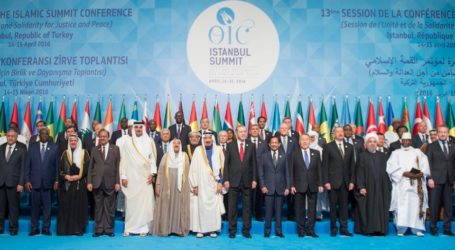 "Full Text of ""Istanbul Declaration,"" Which Emphasizes Unity, Joint Fight Against Terror"