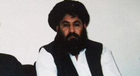 Taliban Leader Killed in US Drone Strike