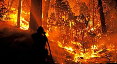 Large Number of Hotspots Detected in Indonesia's Borneo