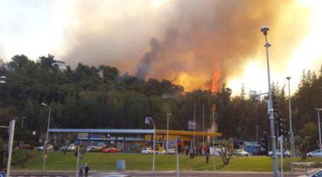 60.000 Israelis Evacuated from Haifa Due To Massive Fires