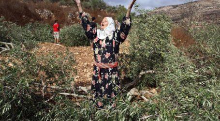 Israel Grab Hold of 85% of Historical Palestine