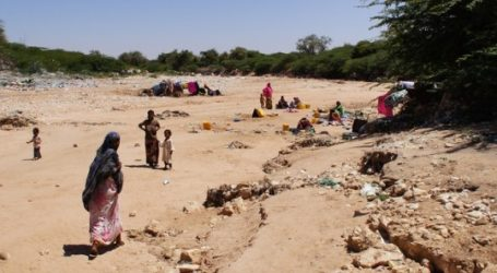 UN Official Calls for Some USD 800 Million for Humanitarian Crisis in Somalia