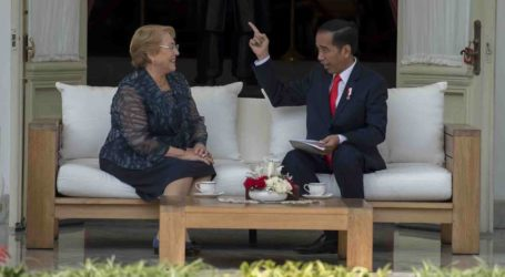 Chile Supports Indonesia`s Bid for UN Security Council Seat