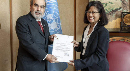 FAO Praises Indonesia for Combating IUU Fishing