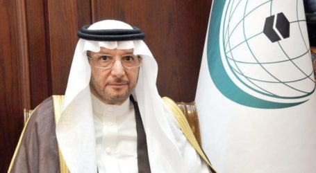 OIC to Achieve 25 Percent Mark in Tntra-Islamic Trade by 2025
