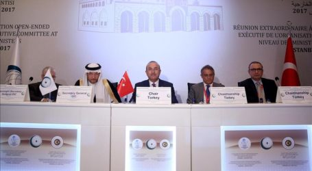 Turkey's FM Urges Support for Palestinian Satatehood