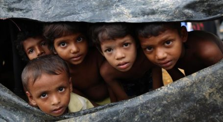 Protesters in Myanmar Block Aid to Rohingya