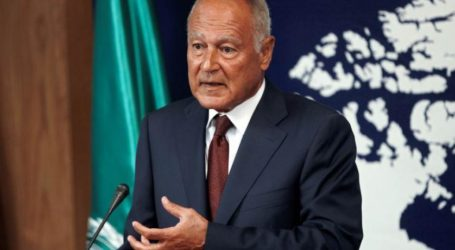 Aboul Gheith Slams Attempts to Thwart Establishment of Palestinian State