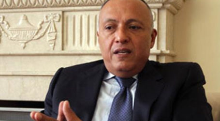 Egypt Stresses Importance of Keeping Communication Open Between PLO, US