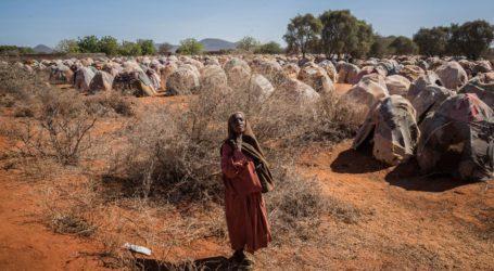 UN Seeks $1 Billion to Help Fragile Countries Create 'Firewall against Hunger'