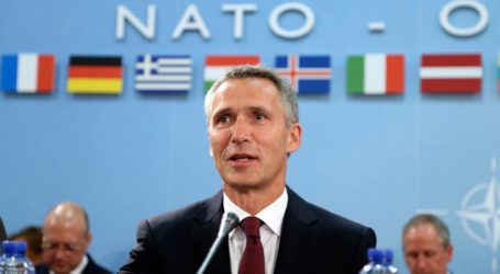 NATO Supports Talks with Taliban to Find Political Solution in Afghanistan