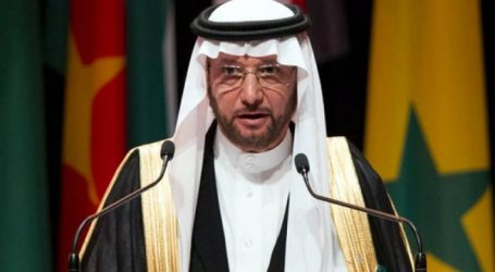 OIC Condemns the Suicide Attacks around Maiduguri