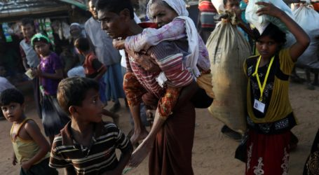 UN Expert Says Myanmar Government Employs Starvation Policy in Rakhine