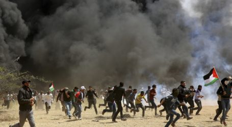 EP Condemns Killing of Palestinians in Gaza Strip by Israeli Troops