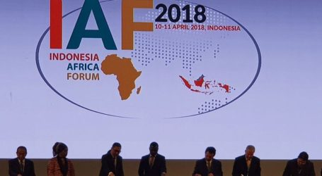 Indonesia, Africa Have Great Potential to Strengthen Economy, Says Veep: Kalla