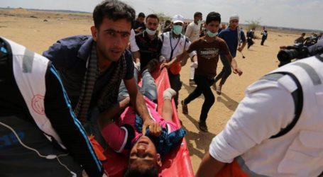 At Least 37 Palestinians Killed, Hundreds Injured at Gaza Border