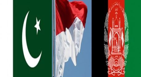 Indonesian Initiative for Afghan Peace