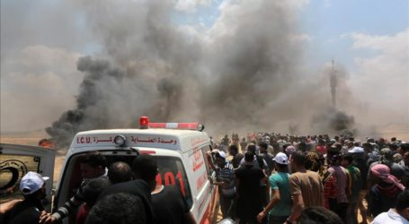 Israeli Army Injures 206 Palestinians in Gaza Strip