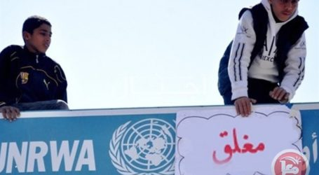 UNRWA Staff on Strike over Service Cuts on Palestinian Refugees