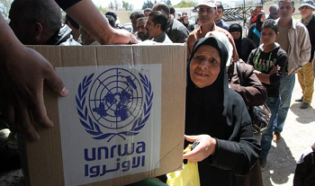 Japan Donates US$3.7 Million in Food Aid for Palestinian Refugees in Gaza