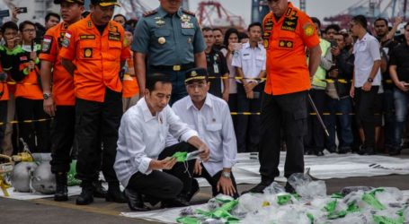 Lion Air Crash: Indonesia Finds Faults in More New Boeing Planes