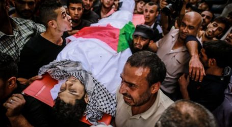 OCHA: Israeli Forces Killed 295 Palestinians in 2018