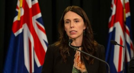 New Zealand to Ban 'Military-style' Guns in Wake of Terror Attacks