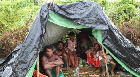 Hundreds of Rohingya Prisoners at Saudi Hunger Strike