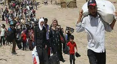 Nearly Half of Palestinians Live in Refugee Camps: PCBS