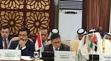 Indonesia Asks OIC to Prevent Israeli Plans to Annex West Bank