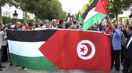 Tunisia Calls for Serious Action in Defence of Palestine