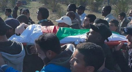 A Palestinian Farmer Killed by Israeli ERW