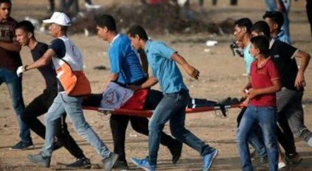 A Palestinian Boy Lost His Eye by Israeli Force Shot